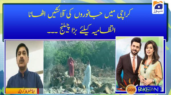 Karachi Me Jaanwaron Ki aaalaishain Uthana Intezamia K Liye Bara Challenge...