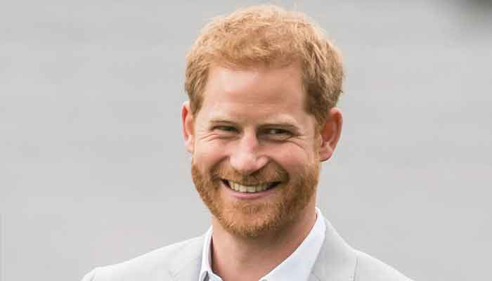 Queen in despair over Prince Harrys memoir: Monarchy braced for new attacks