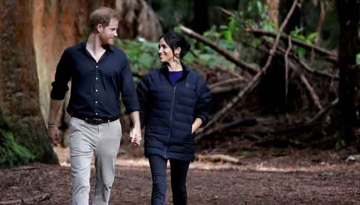 Prince Harry and Meghan Markle don't care about UK says royal biographer