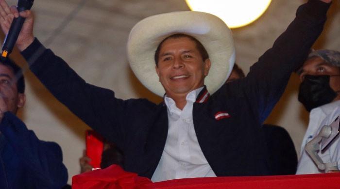 Pedro Castillo, Peru's 'first poor president'