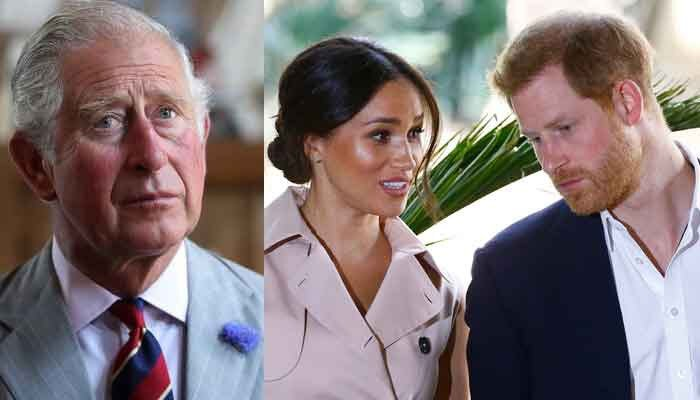 Prince Charles concerned about Prince Harry and Meghan Markles relationship