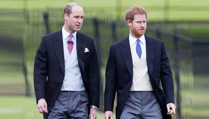Prince Harry and Williams rift leaves Kate Middleton devastated