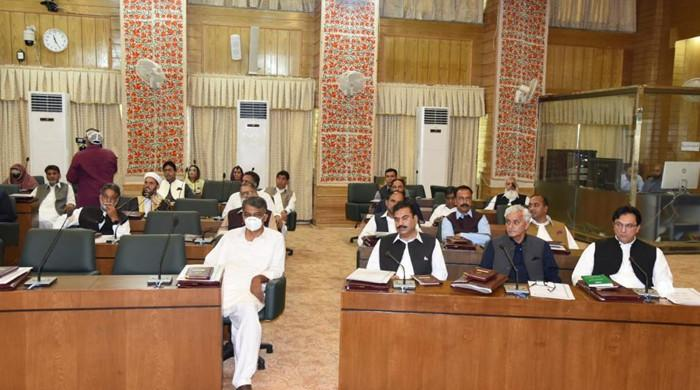 Age, gender, profession: How diverse is the new assembly of Azad Kashmir?