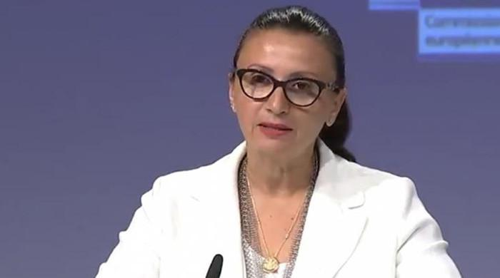 EU foreign ministry spokesperson raises concerns over violence against journalists in Pakistan
