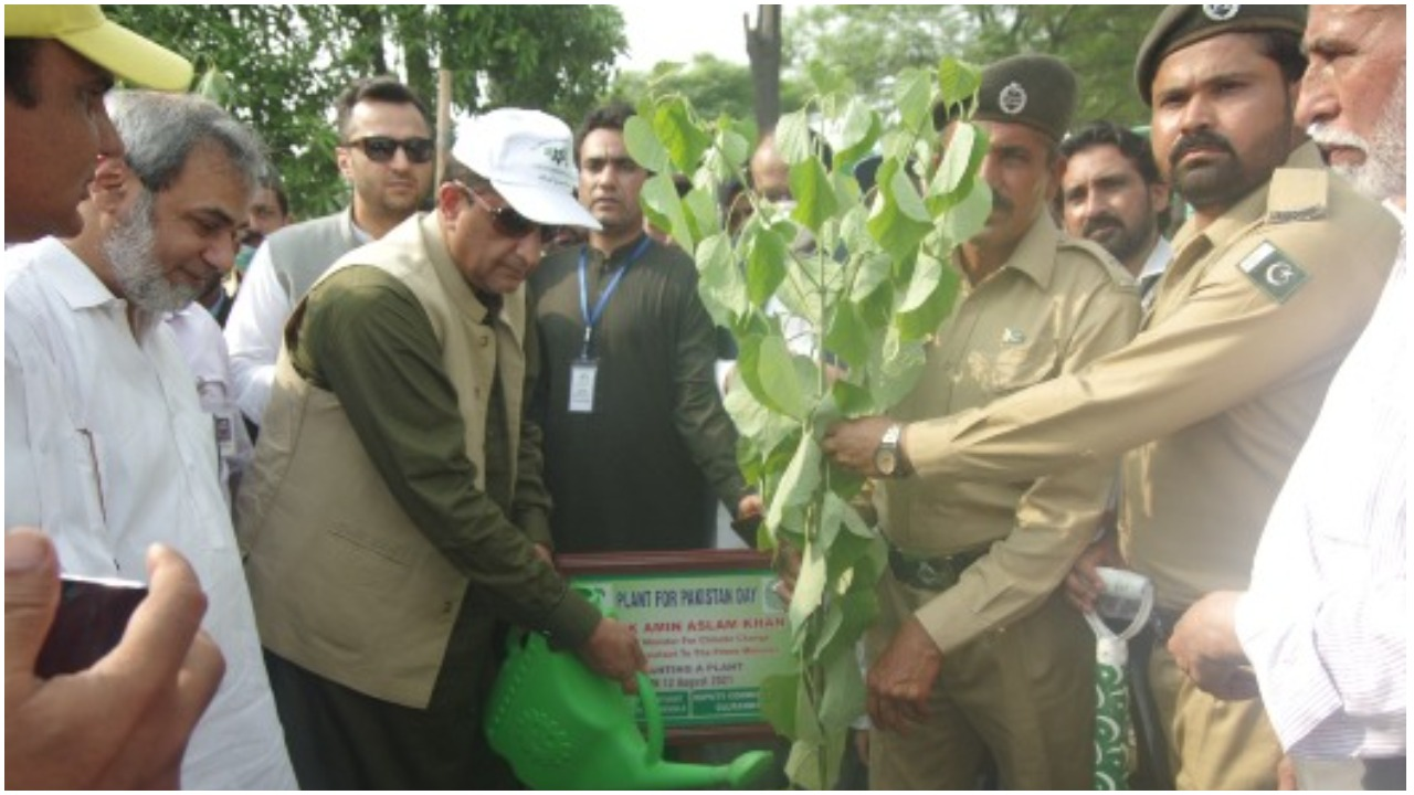 Special Assistant to Prime Minister (SAPM) on Climate Change Malik Amin Aslam planting a tree. APP
