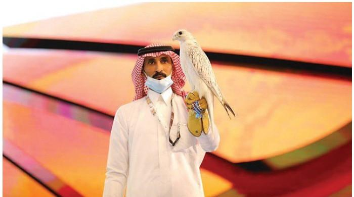 Super White Gyrfalcon's auction for $93,000 breaks records
