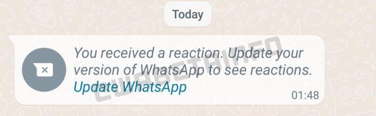 WhatsApp screenshot. Photo: WABetainfo