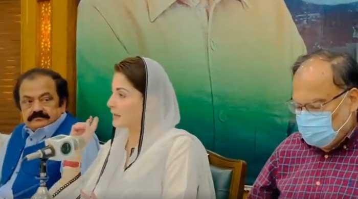 Maryam tells PML-N workers to pay no mind to 'enemy propaganda'; Nawaz, Shahbaz 'are one'
