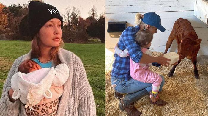 Gigi Hadid's mom Yolanda gives fans  first glimpse of her granddaughter Khai Malik