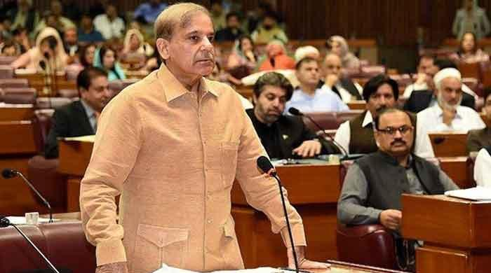 NA sees heated exchange between Opposition, treasury over termination of govt employees