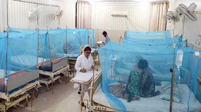 In major outbreak, Peshawar reports 213 dengue cases in a day