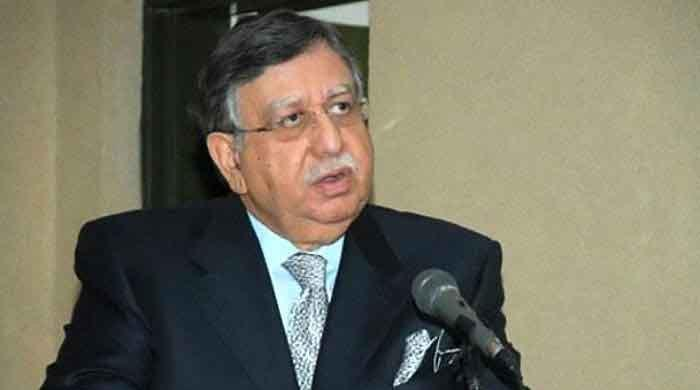 Pakistan's inflation increased due to IMF programme: finance minister