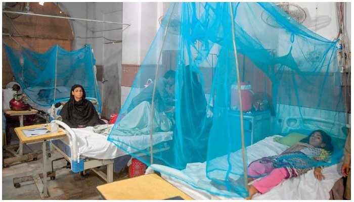 A file photo of a dengue ward at a public hospital in Pakistan. Photo:AFP