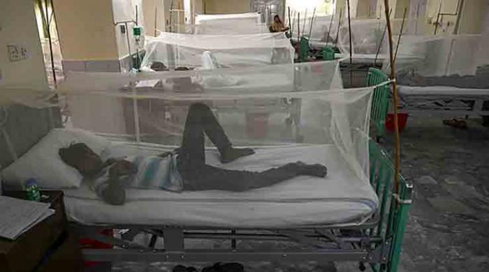 Dengue on the rise in Punjab: 828 cases reported this year