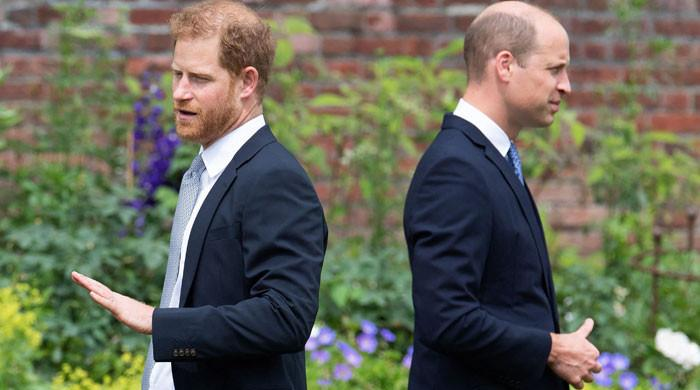 Prince Harry 'wants to prove himself better' than Prince William: report