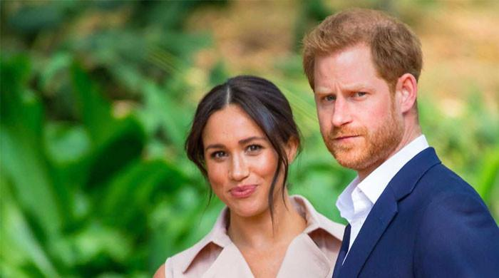 Meghan Markle, Prince Harry 'want to build an entirely woke monarchy': report