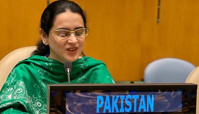 Pakistan's visually impaired diplomat Saima Saleem speaking in the UNGA.