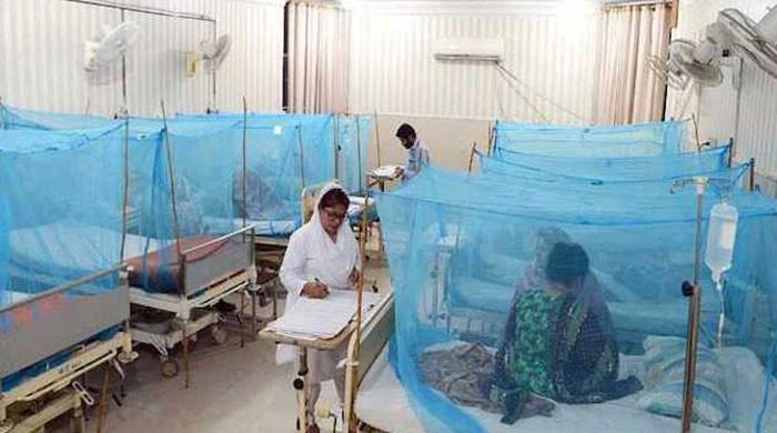 Alarm bells ring for Pakistan as dengue virus rears its ugly head in Punjab, KP