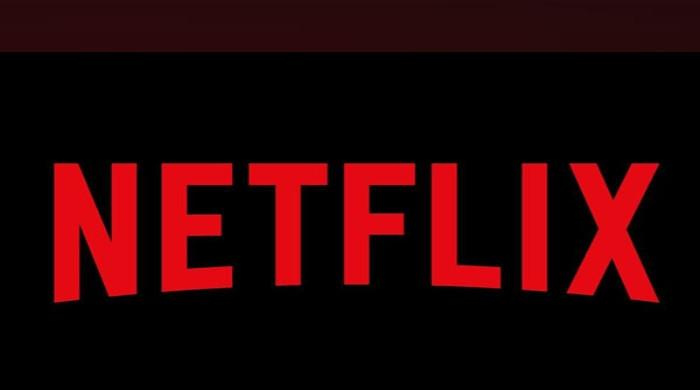 Netflix chief says no plans to buy movie theatre chain