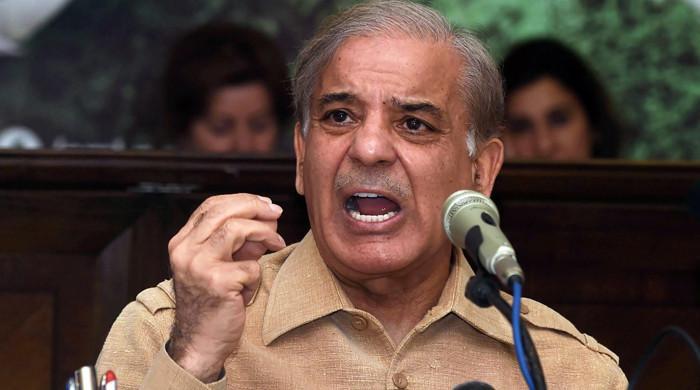 NCA investigated Shahbaz Sharif on London flat, loan from businessman