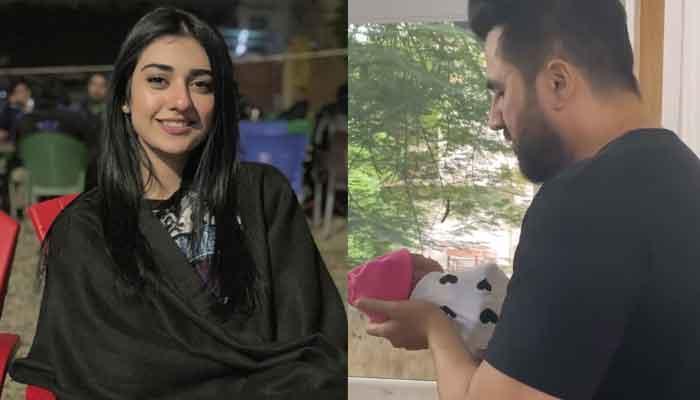 Sarah Khan shares video of her daughter