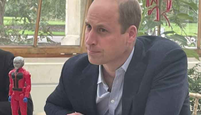 Why Prince William had Ant-Man with him during latest royal activity?