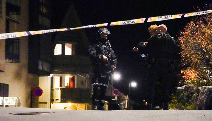 Five killed, two wounded in Norway bow-and-arrow attack: police
