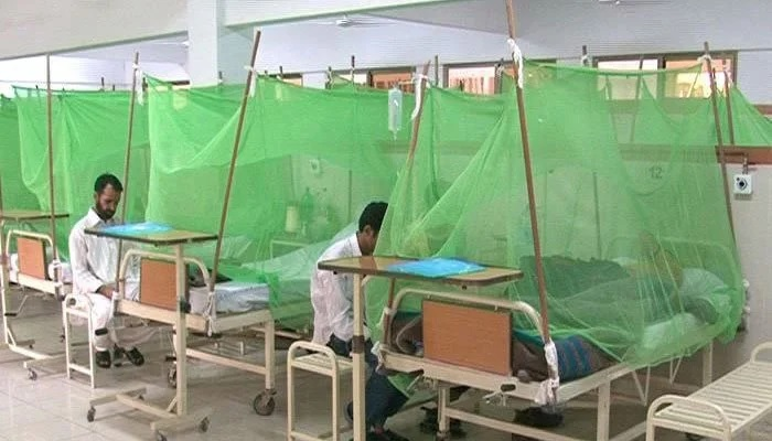 The first confirmed outbreak of dengue fever was recorded in Pakistan in 1994. Photo: Geo.tv/ file