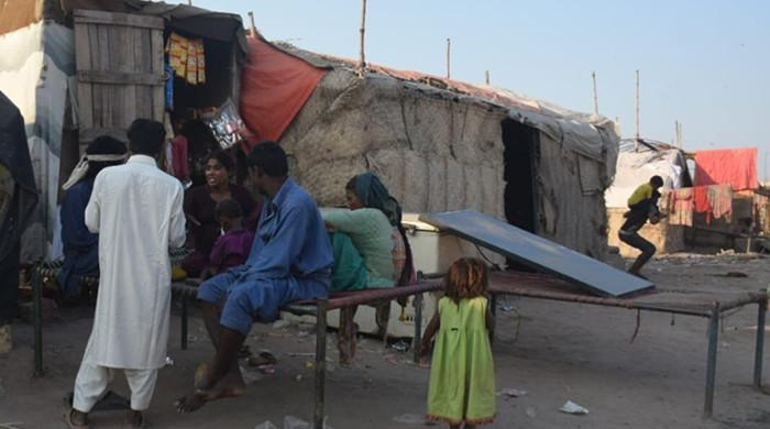 Nomads missing out on COVID-19 vaccination due to lack of CNICs
