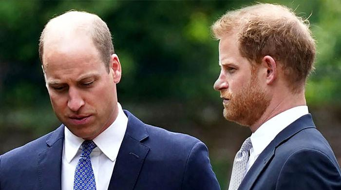 Prince Harry to 'reach out' to donors from Diana event after refusing invite