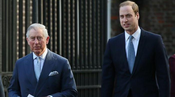 Prince Charles, William competing for 'environmentalist king-in-waiting' title