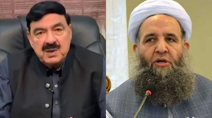Interior minister, Noor-ul-Haq Qadri to negotiate with banned outfit on PM's directives