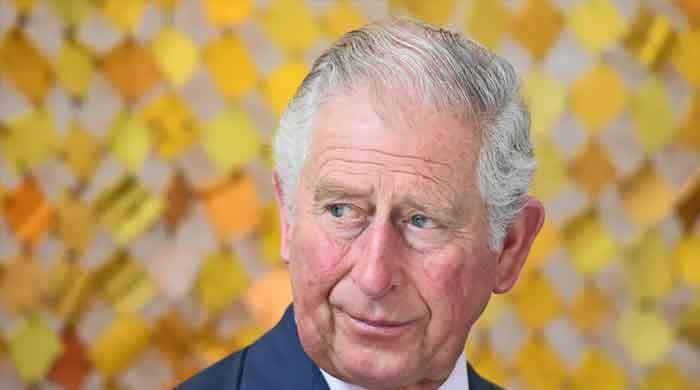 Prince Charles addresses Saudi Green Initiative forum