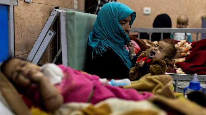 Afghanistan on brink of collapse: Pakistani, Swedish ministers