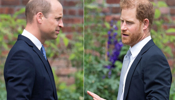 Prince William, Harry 'cant rely on climate crisis agenda to mend rift - Geo News