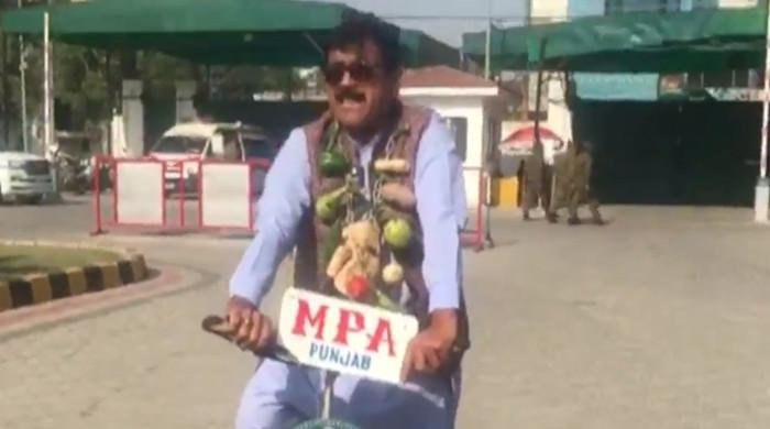 WATCH: Punjab MPA enters provincial assembly wearing garland made of vegetables