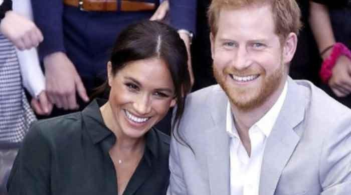 Prince Harry, Meghan Markle targeted by 'coordinated harassment campaign' on Twitter: report