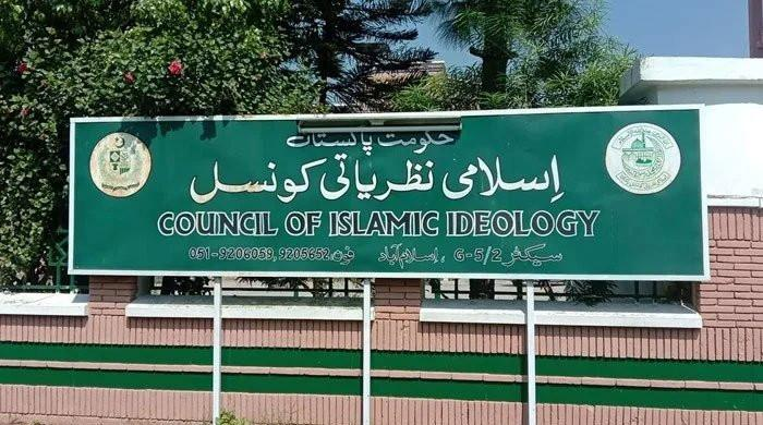 'Castrating rape convicts un-Islamic': Council of Islamic Ideology